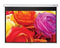 Pantalla manual Optoma DS-1123PMG+, 265,6 x 166 cm, 16:10, blanco mate